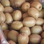 Geyve Meyve Meyvesi39