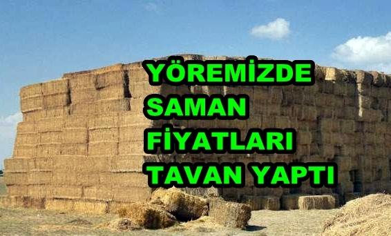 Yöremizde Saman Fiyatları Tavan Yaptı