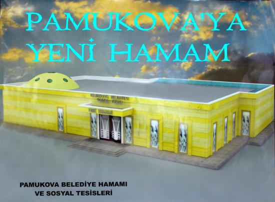 PAMUKOVAHAMAM6