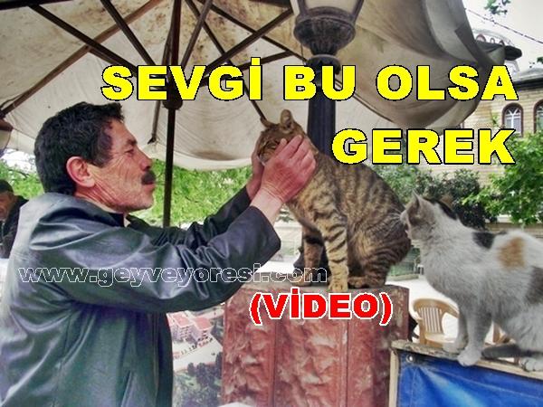 Geyve'de Hayvan Sevgisinin Öncülerinden Adem Sertel (video)