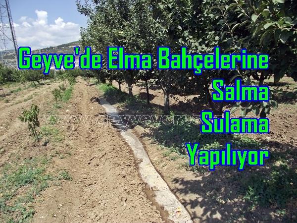 Geyve'de Elma Bahçelerine Salma Sulama Yapılıyor