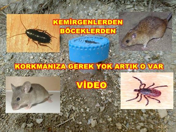 Kemirgen Böcek Kovucu Çok Beğenildi ( video )